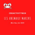 3- Mini Box été 2021 les animaux marins Photo boutique site